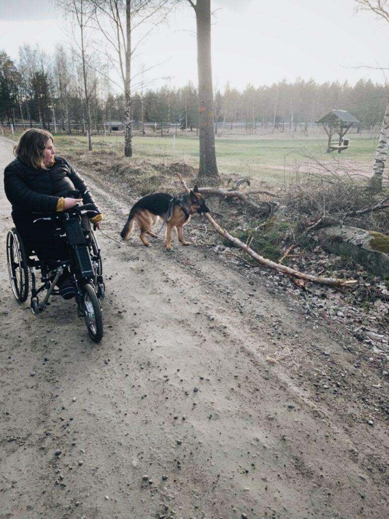 Hundliv! Schäferhunden Doris med matte Ellinor på promenad med rullstol.
